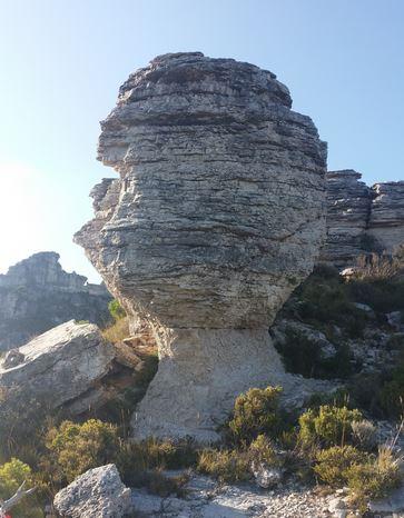roques airosa