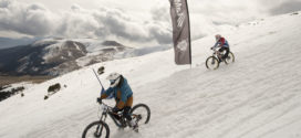 la molina chicken run