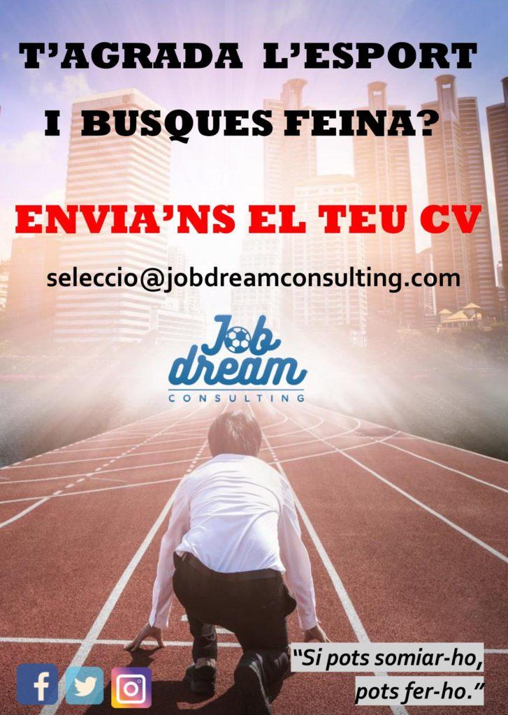 job dream consulting